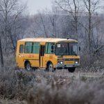 Снова в школу: автокомпаниям помогут госзакупками