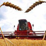 Новая нефть: Россия увеличила экспорт сельхозпродукции